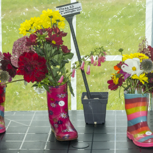 Class 23 (up to 12 yrs) - flower arrangement in a wellington boot